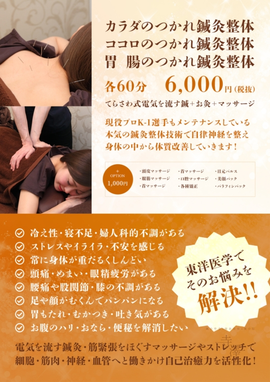 寺澤の鍼灸整体コース