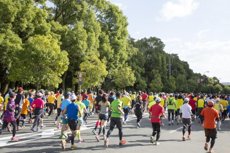 寺澤鍼灸整骨院は大阪マラソンを走る市民ランナーを応援します