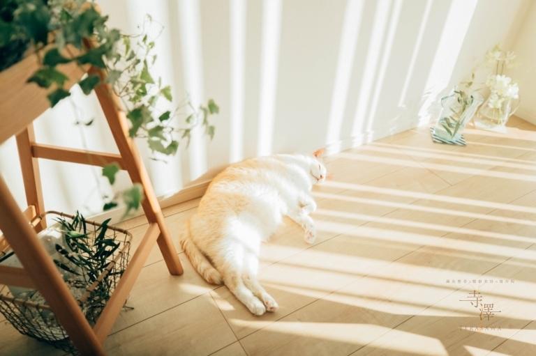 健康美を目指すなら良質な睡眠が大切